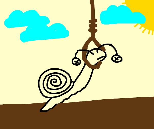a snail has been hung
