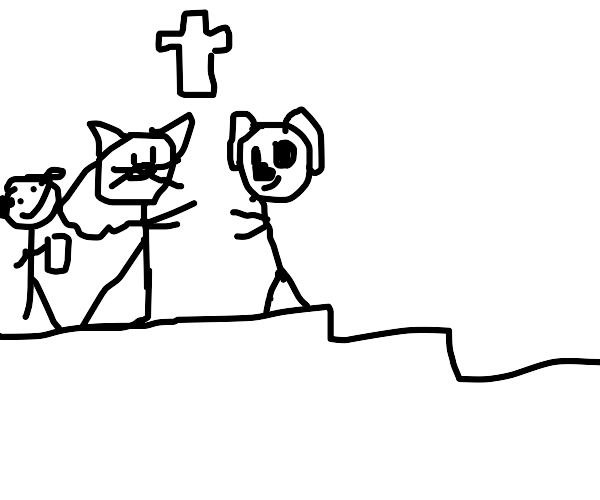 Cat and dog got married