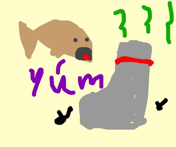 Brown fish eats gross gym sock