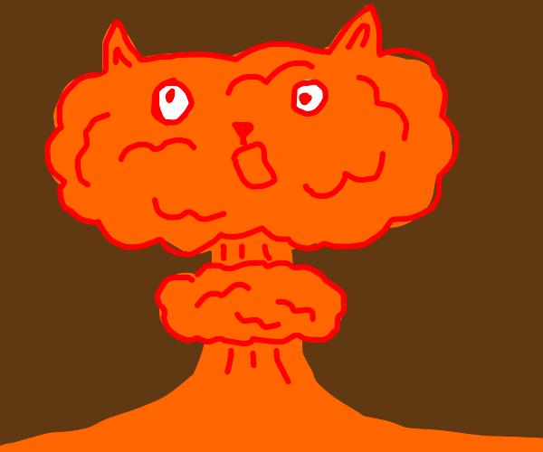 Exploding kittens (game)