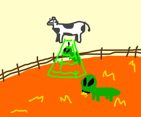 cow abducts alien