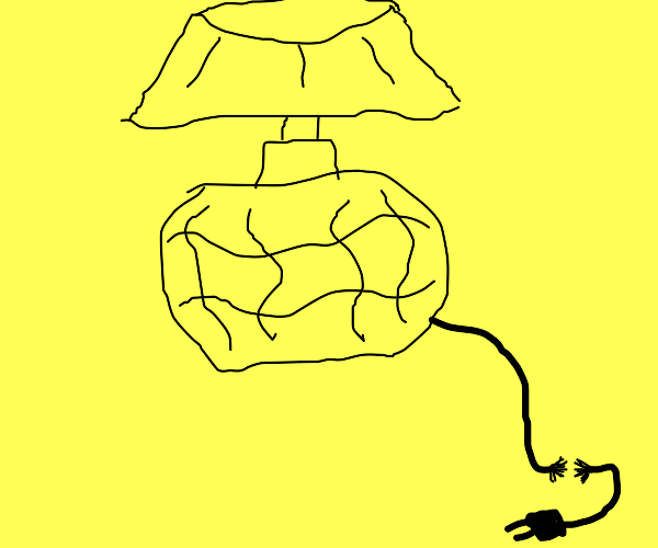 A lamp with a frayed power cable