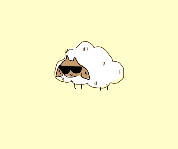 one epic sheep wearing dope shades