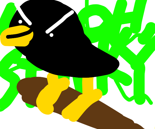 Evil and smelly bird