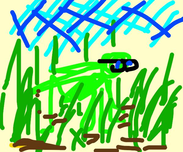 Grasshopper with Glasses