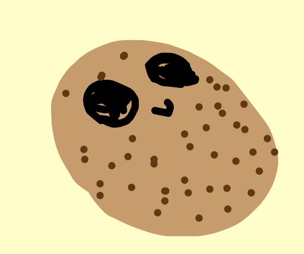 surprisingly cute potato