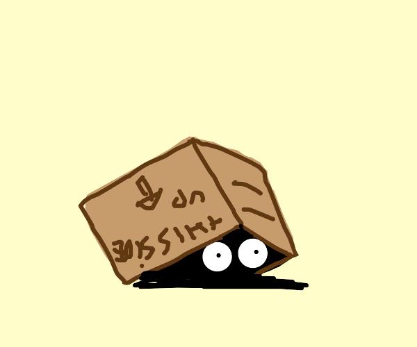 Box Critter