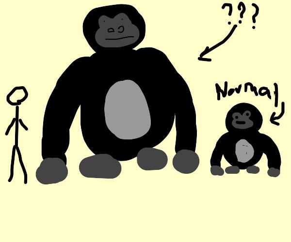 Jumbo Gorilla