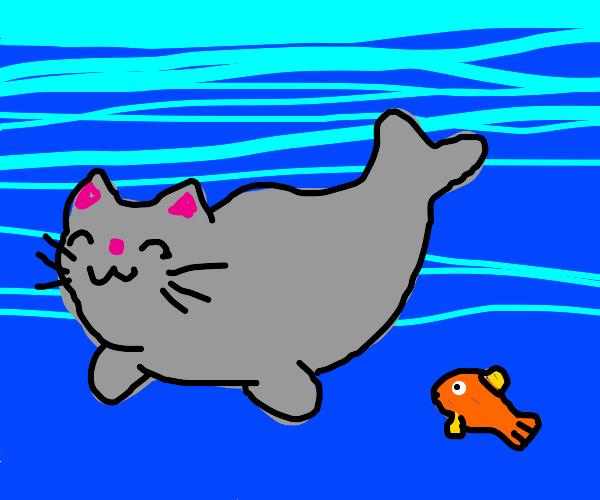 Cat Seal