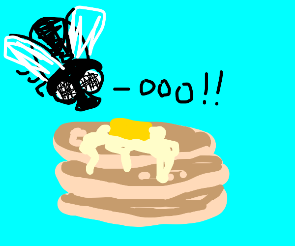 Fly discovering Pancakes