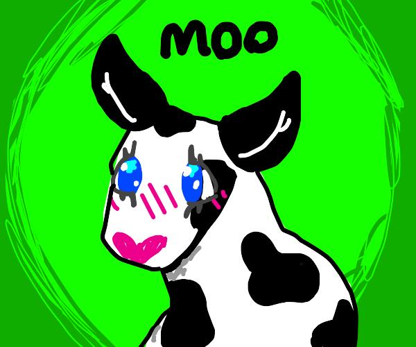Kawaii cow moos at you