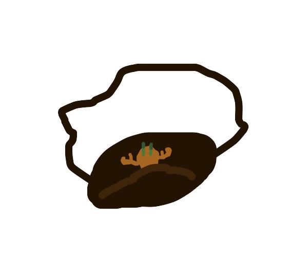 Crab in a hockey bag