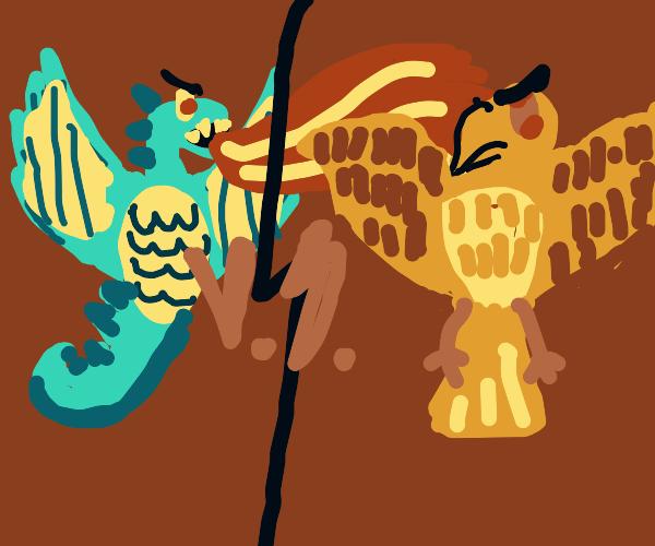 Dragon vs a Phoenix
