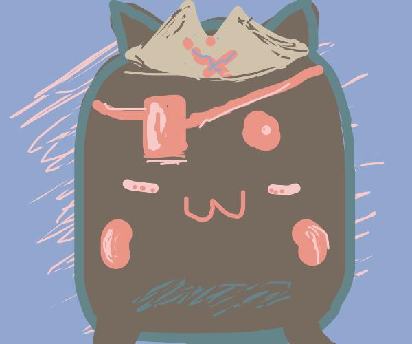 Happy pirate cat