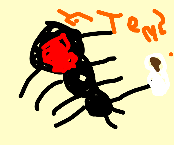 Spider give you tea