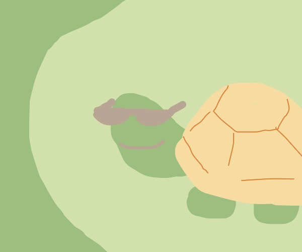 Turtle with cool sunglasses