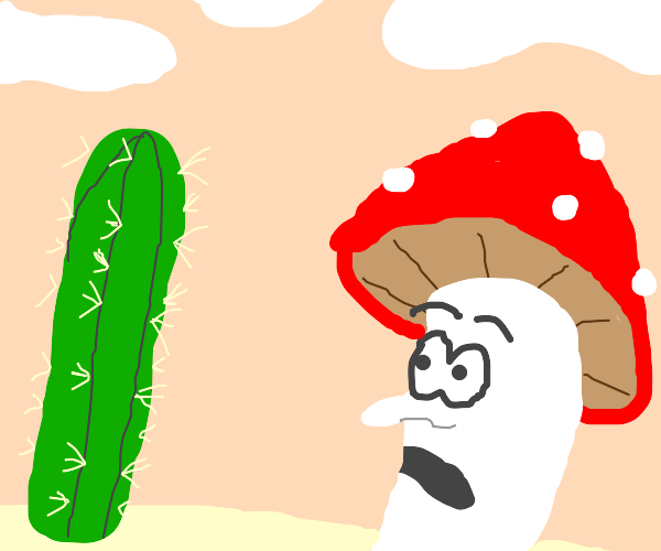 shrooms dude sees cactus