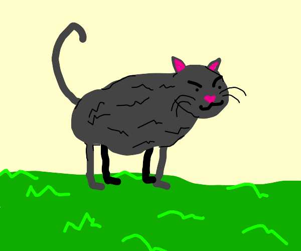 A cat on grass?