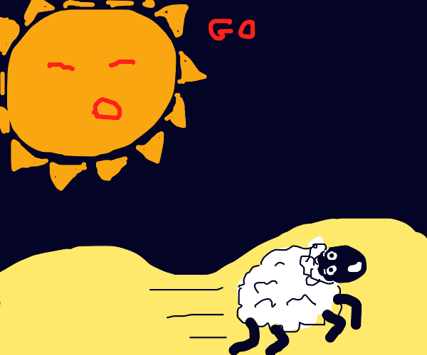 sheep running from the sun