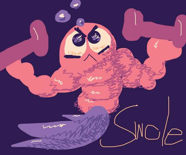 buff baby shrimp