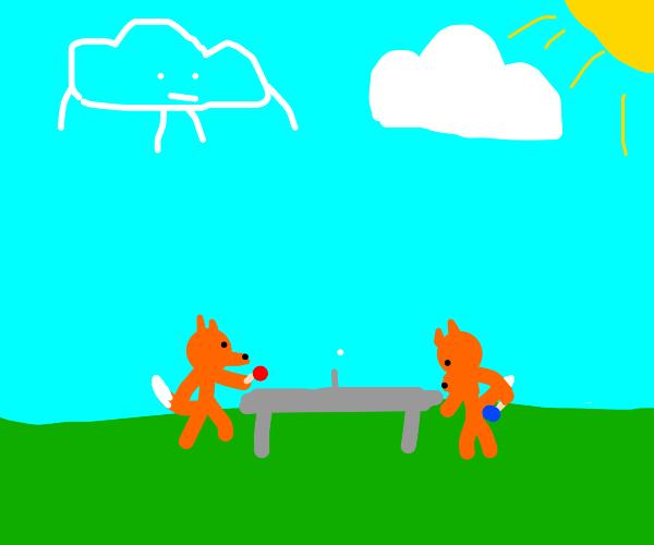 Foxy Ping-Pong