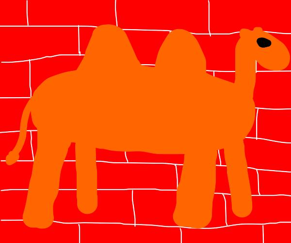 Graffiti Camel