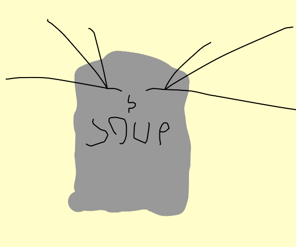 Mrs. Soup Can
