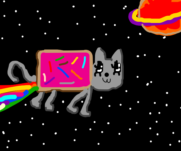 PopTart kitty in space, proudly