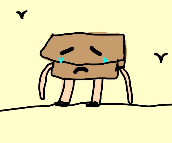 sad box-man