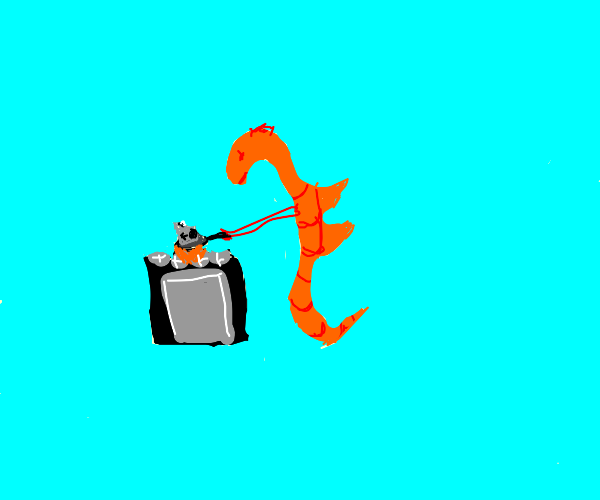 seahorse is cooking a camera