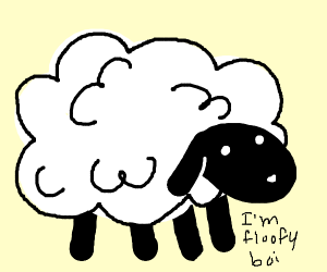 Sheep is a floofy boi