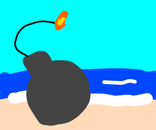 bomb taking a relaxing walk on the beach
