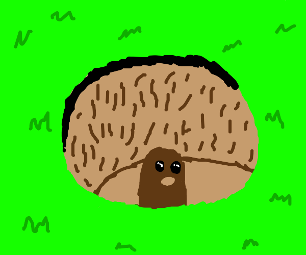 Diglett at the bottom of a hole