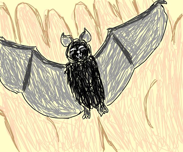 little bat  (aimal)