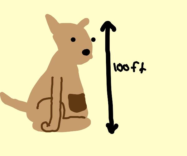 Giant kangaroo is terrifying.