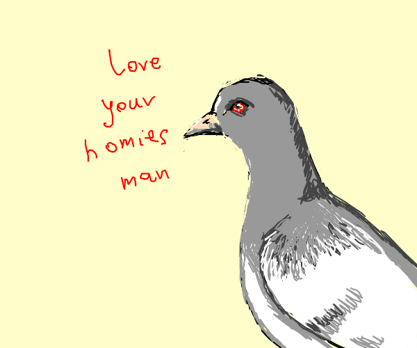 Homie Pidgeon