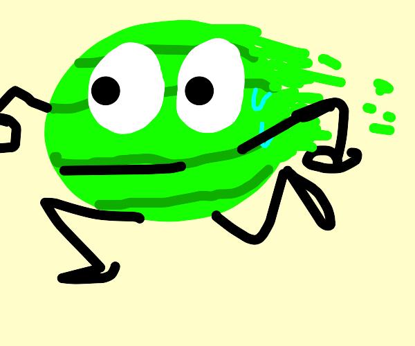 A speedy watermelon