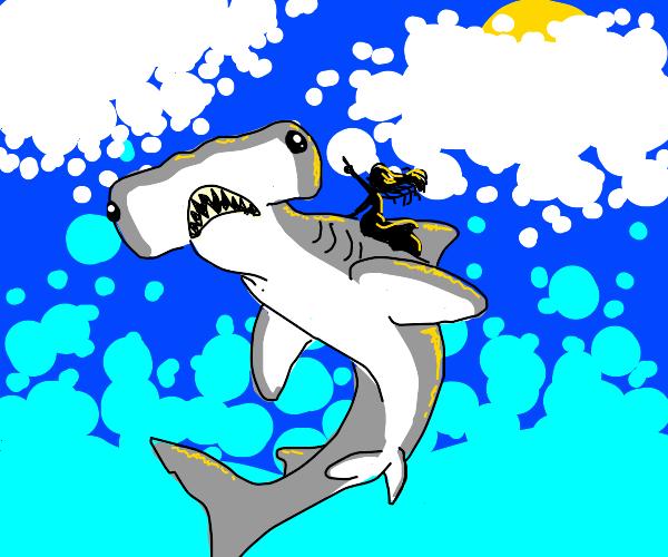 Flying on a hammerhead shark