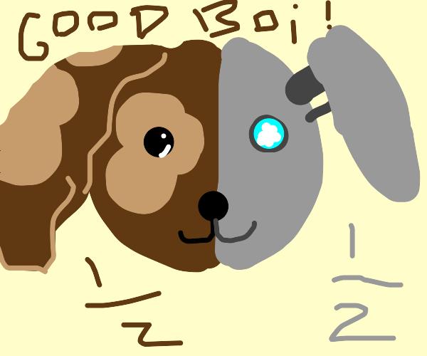 Half good boi half robot