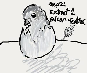 Step 1: hatch a falcon
