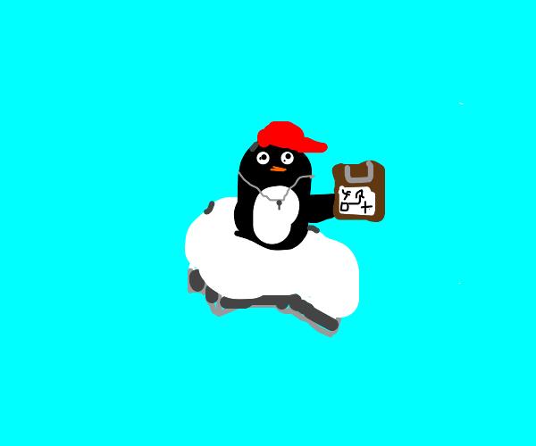 coach penguin