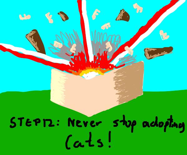 Step 11: Adopt EVEN MOAR cats!!!!