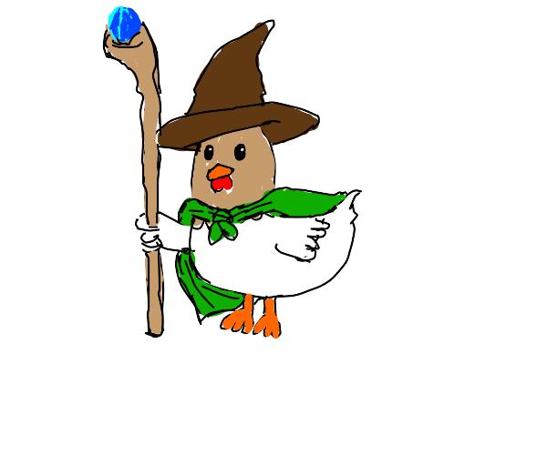 Chicken wizard