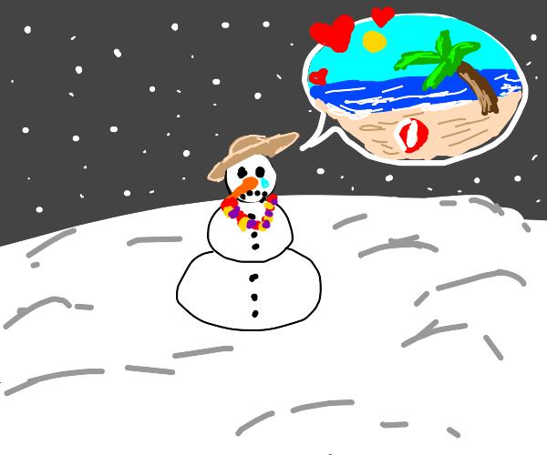 man loves summer but is a snowman in winter