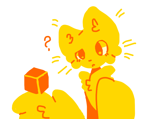 fluffy cat is confused by cube