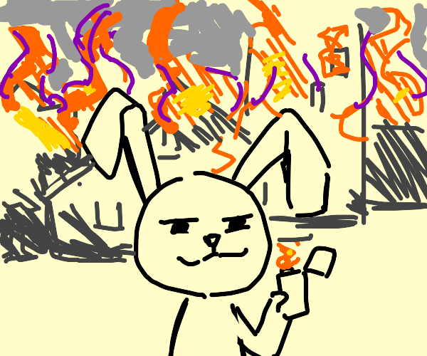 a bunny does not regret arson