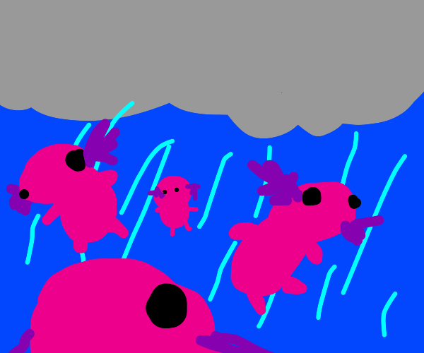 There's Raining Axolotls!