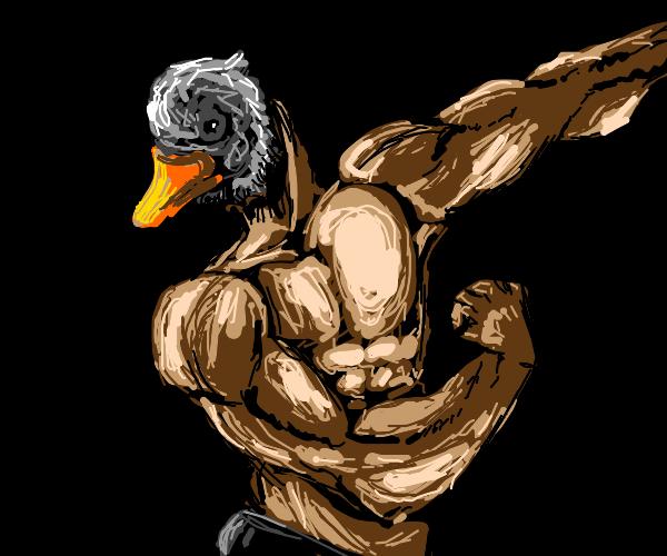 Half human buff duck