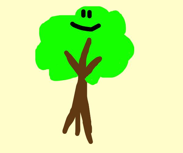 Tree boi