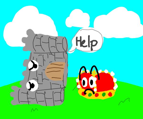 castle has fallen down, asks crown for help